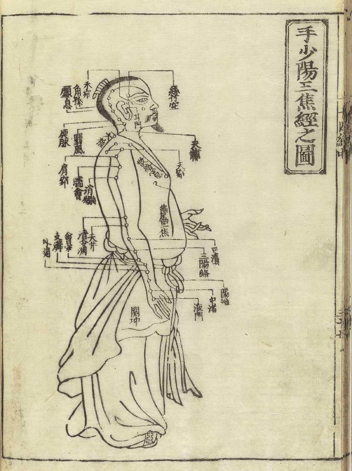 Il Fuoco E Femmina Iching Esagramma 30 L Aderente Il Fuoco I Ching E Numerologia Orientale